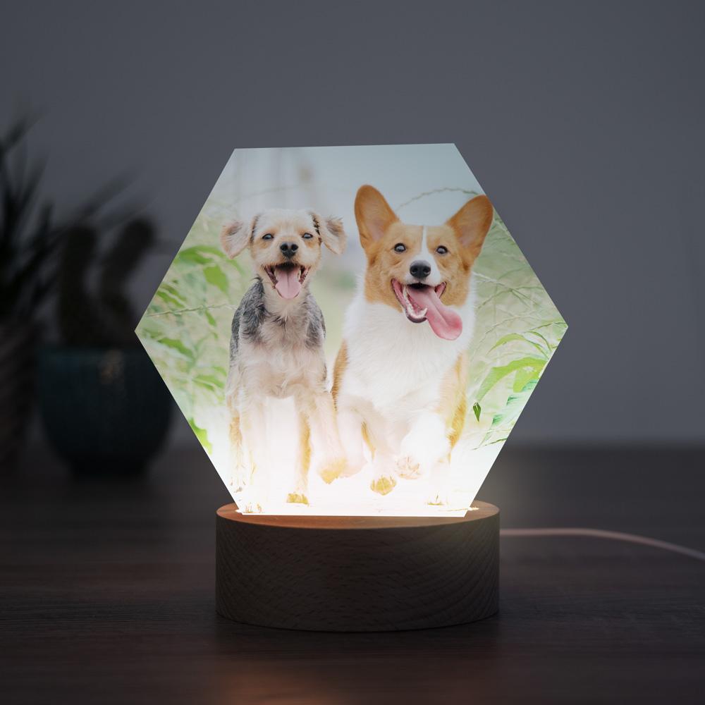 tiergeschenke personalisierbare led leuchte mit foto